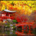 2016年11月京都の紅葉は?混雑具合と天気&旅行服装