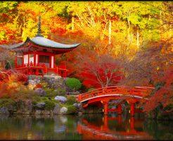 京都,観光,混雑,紅葉