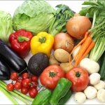 高田馬場カーポラヴォーロの感想!バーニャカウダ&野菜が美味しい!