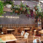 新宿ベジタリアンカフェ、ミスターファーマー感想口コミ!混雑具合や味は美味しい?